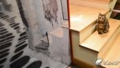 027-126-szafy-027k-nowoczesna-6704
